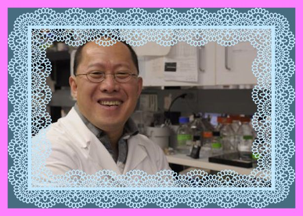 Dongsheng Duan, University of Missouri, and his research team have been able to reduce muscle disease and improve muscle strength in a dystrophic dog.Credit: Christian Basi/University of Missouri